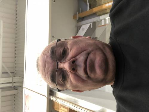 Patrice M.'s profile picture